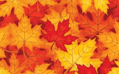 Petits plaisirs d'automne à la Culinaire